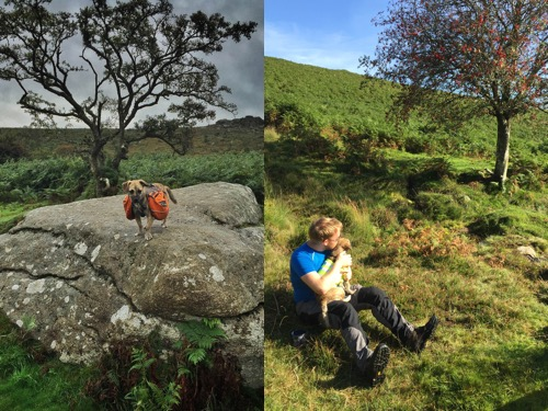 Dartmoor walking and wild camping