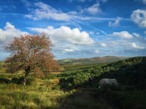 Dartmoor wild camping near Haytor