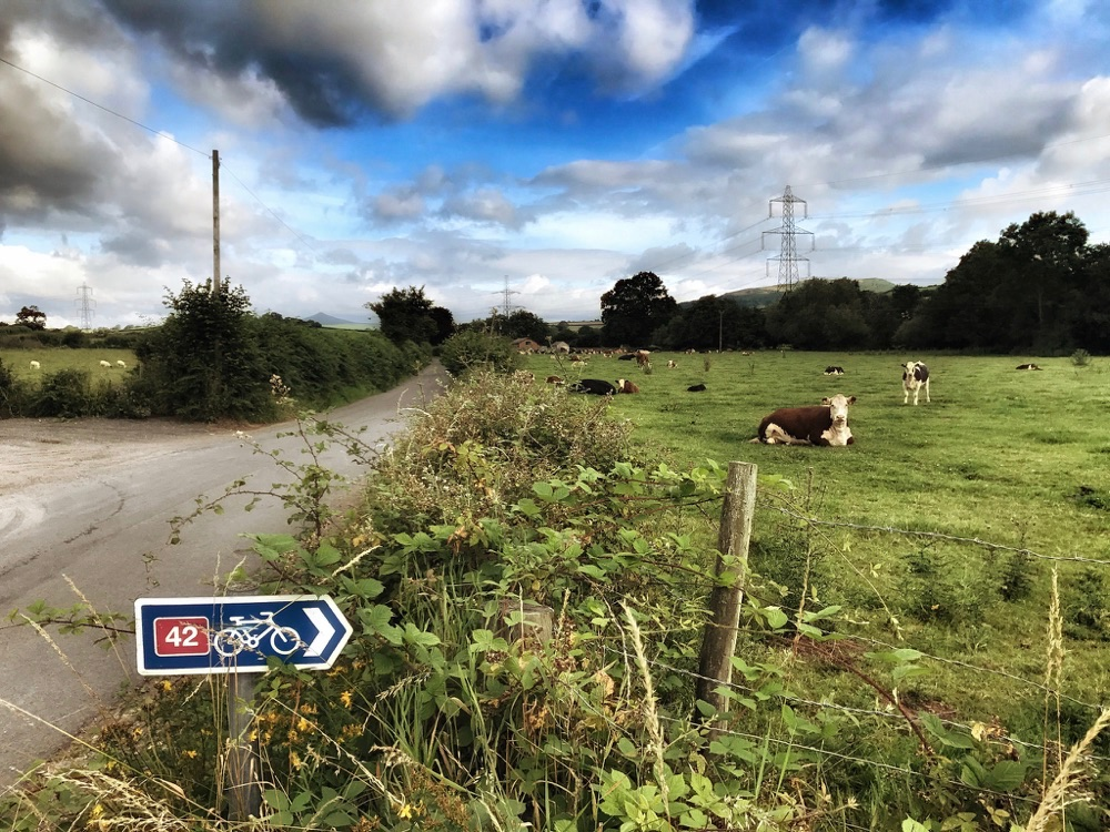Wales Cycle Touring - Route 42